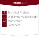 MicroMacro_alt-02
